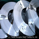 Premium Quality Stainless Steel Strips (AISI317L)