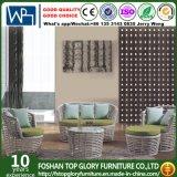 Outdoor Furniture Relax Wicker Garden Sofa (TG-011)