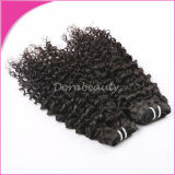 Virgin Hair Unprocessed Human Hair Weave Brazilian Kinky Curly