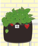 Garden Vegetable Planter (31148)