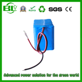 Competitive Price 11.1V10ah Lithium-Ion Battery Pack for UPS