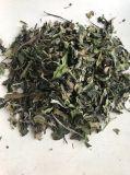 White Peony Tea Leaf 6902 for EU Market