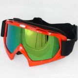 Hot Sale Ski Goggles/Eyewear for Motorcycle Riders (AG015)