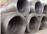 82b High Carbon Steel Wire Rods 6.5mm 8mm 10mm 16mm