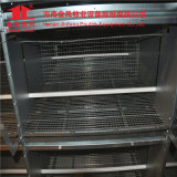 Good Quality H Type Strong and Durable Poultry Farm Egg Layer Chicken Cages