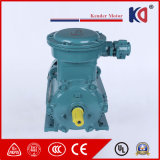 High Quality Ex-Proof Electric Motor with Low Noise
