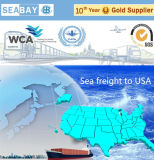 Freight Forwarder/ Logistic Service From China to USA
