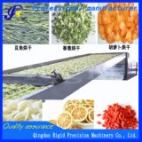 Large Scale Continuous Food Drying Machine (food grade stainless steel)