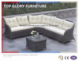 Garden Patio Outdoor PE Rattan Sofa Sets (TG-044)