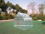 A9 Series Greenhouse for Plants and Flowers (A907)
