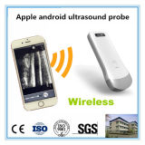 for Smart Phone Tablet Use All-in-One Type Ultrasound System