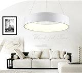 High Quality Projection Lighting Modern Pendant Lamp