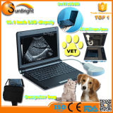 Mini Laptop Veterinary Ultrasound Ce Vet Ultrasound Machine Sun-806f with Rectal Probe