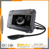 Bestscan S6 Portable 7inch Touchscreen B Mode Diagnostic Ultrasound Scanner for Veterinary Use