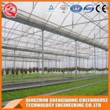 Agriculture Plastic Film Greenhouse for Vegetables/Flowers/Garden