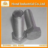 Ss304/316 Hex Head Bolts with Full Thread DIN933