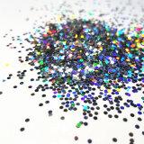 Colored Glitter Powder Supplier for Screensilk