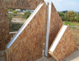 Sandwich Panels / Structural Insulated Panels (Fiber Cement & OSB Facing SIP)