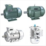 Electric Motors-B3 (Y2-112-4)