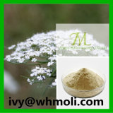 High Purity Natural Plant Extracts Powder Osthole CAS 484-12-8