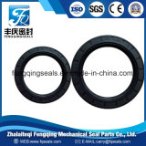 Shaft Rubber Tc Oil Seals for Sealing Gasket