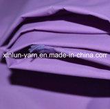 China Product Outdoor Transparent Fabric for Sun Umbrella