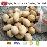 Top Quality Fresh Whole Potato