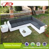 UV Resistant Garden Furniture Sofa Set (DH-8350)
