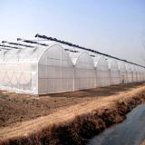 Wholesale Greenhouse Supplies for Agricultural with High Quality