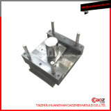 Competitive Price Plastic Injection Jug Mould in Huangyan