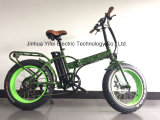 20 Inch Folding off Road Wide Tire Lithium Battery Fat Electric Bike