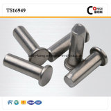 Professional Factory Non-Magnetic Stainless Steel Ball Head for Home Application