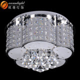 Crystal Ceiling Lamps Decorative Flower Shape Ceiling Lamps for Hotel /Home Om55103
