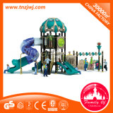 Ce Approved Plastic Outdoor Children Playsets Tube Slide