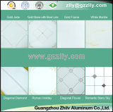 Pop Metal Armstrong Polymeric Ceiling