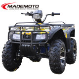 Factory Driect Selling Big Adult Electric ATV with Attractive Prices