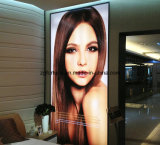 Printing Material 220gms Backlit Pet Film