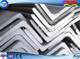 Galvanized Durable Angle Steel for Building Materials (SSW-AS-001)