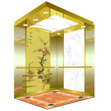 Luxury Passenger Elevator with Professional Support Sevice