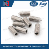 DIN914 Stainless Steel Hexagon Socket Set Screws with Cone Point