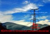 Megatro 500kv 5c1 Sz3 Double Circuit Transmission Tower