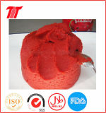 Fine Tom Tomato Paste China Supplier