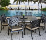 Outdoor Patio Garden Aluminum Furniture 10PCS Nassa Cast Aluminum Dining Set with Lasy Sussan Top