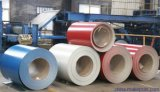 Dx 51d Grade PPGI Pre-Painted Galvanized Steel Coil Building Material From Shandong China