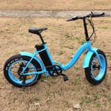 Wholesale Folding E-Bike for Women