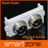 Aviation Plugs Wall Plate, XLR Faceplate (9.1134)