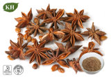 Pure Natural Anise Extract/Star Anise Extract Shikimic Acid 10%-98%