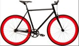 Customized Color Fix Gear Bicycle