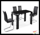 Modern Dining Table and Chair for Sets (DT062)
