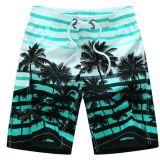 Men′s Stripe Printing Board Beach Shorts